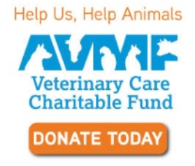 AVMF donation link image